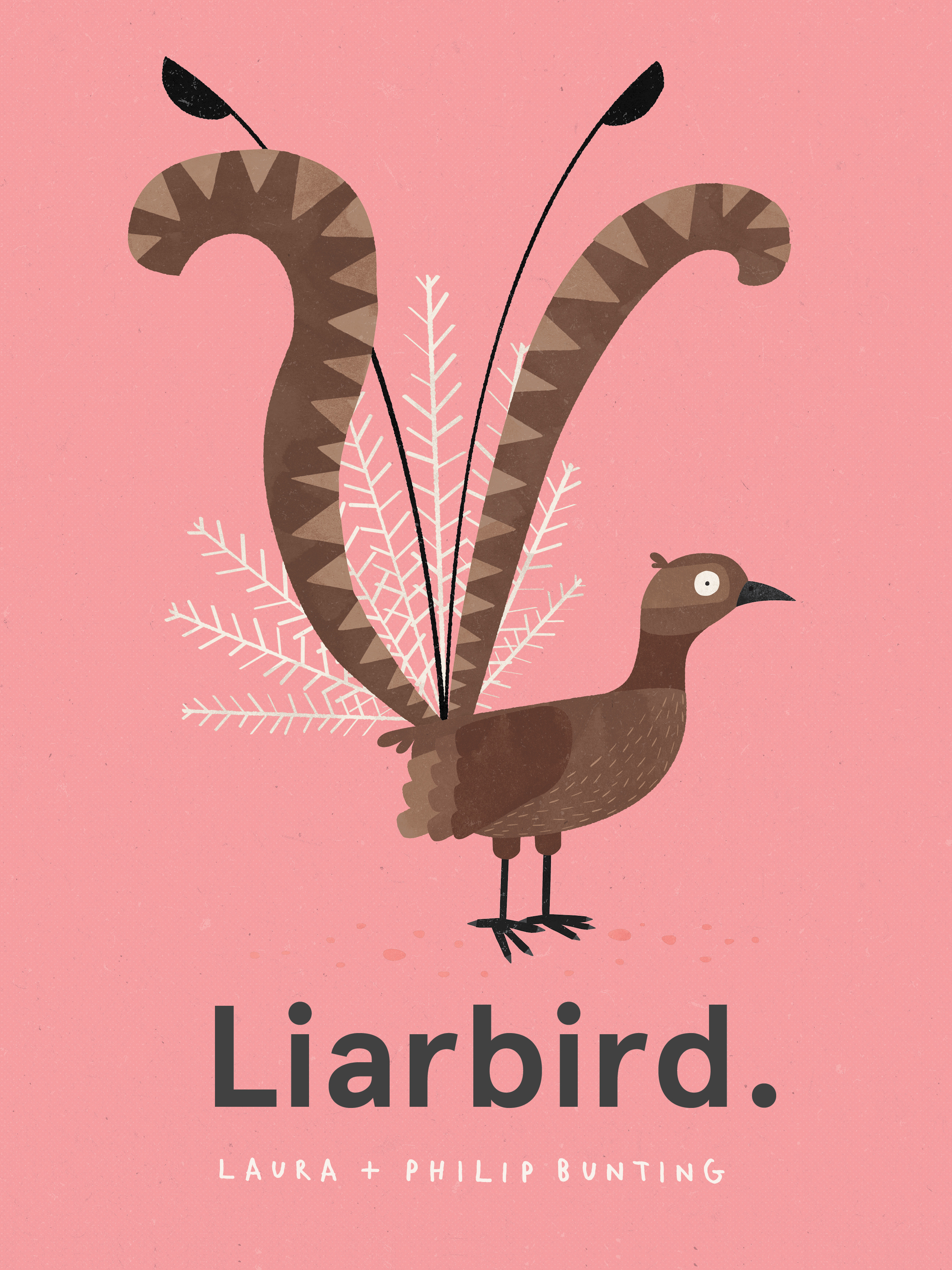 Liarbird by Laura Bunting & Philip Bunting
